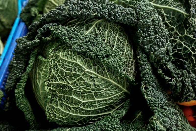 Verse Savooiekool bij de organische Markt van Frarmer ` s in Europa stock afbeeldingen