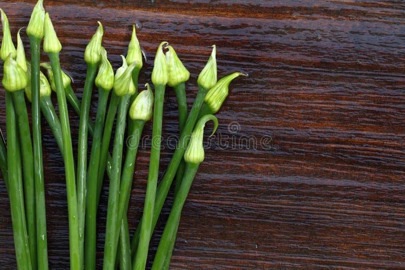 Verse sjalotbloemen royalty-vrije stock fotografie