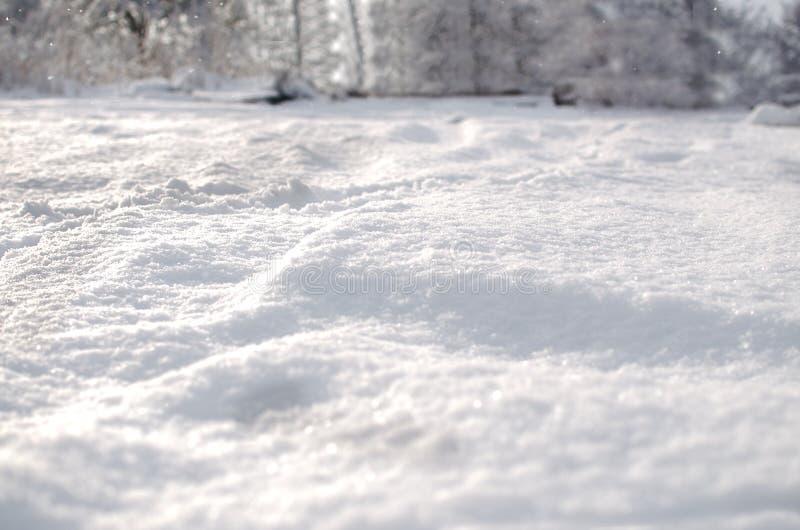 Verse sneeuwdekking stock afbeeldingen
