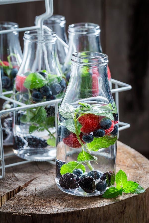 Verse soda in fles met smakelijke bessen royalty-vrije stock afbeelding
