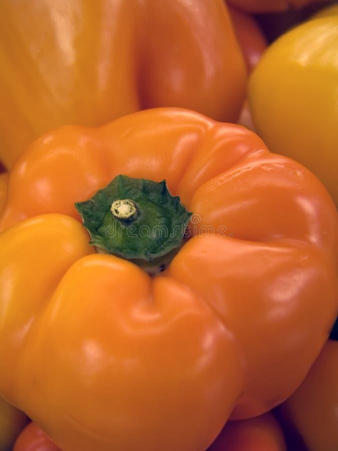 Verse Spaanse peper (Macro) stock foto