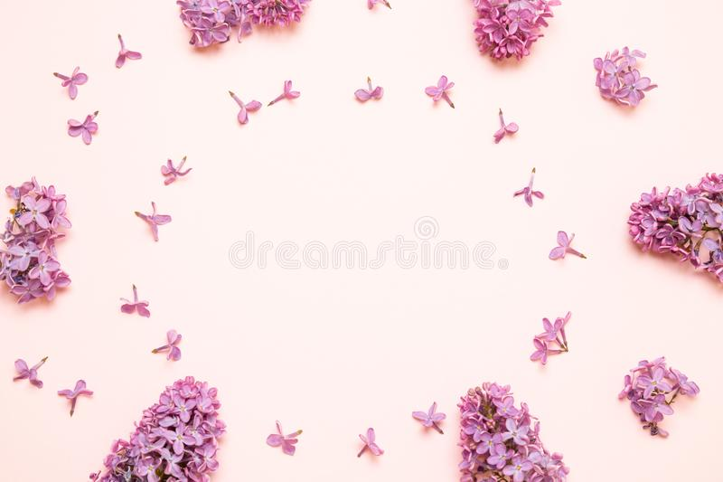 Verse takken purpere lilac bloemen op roze achtergrond royalty-vrije stock afbeeldingen