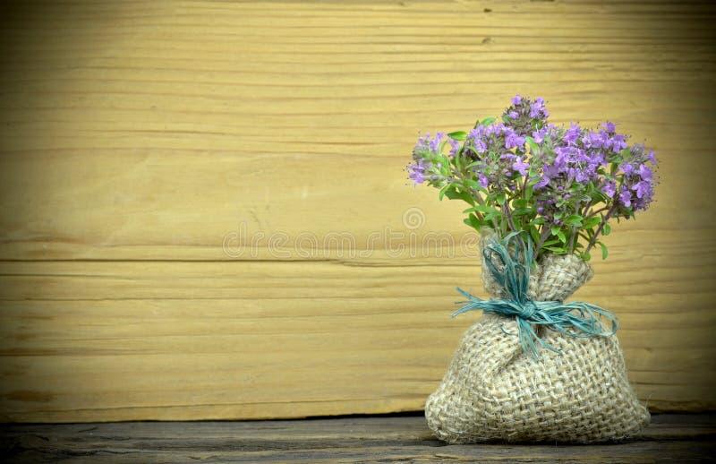 Verse thymebloemen royalty-vrije stock foto