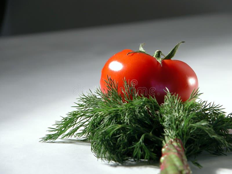 Verse tomaat en dille 2 stock foto's