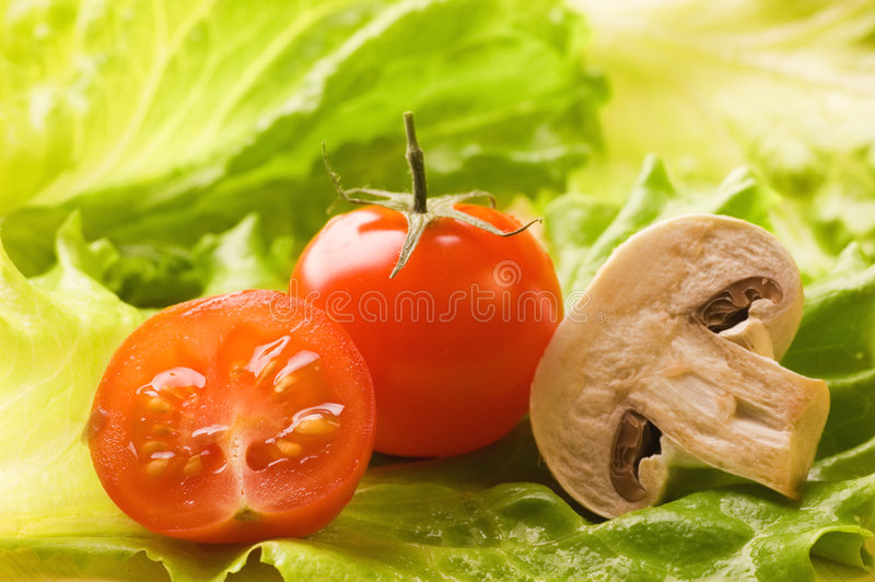 Verse tomaat en paddestoel royalty-vrije stock afbeeldingen