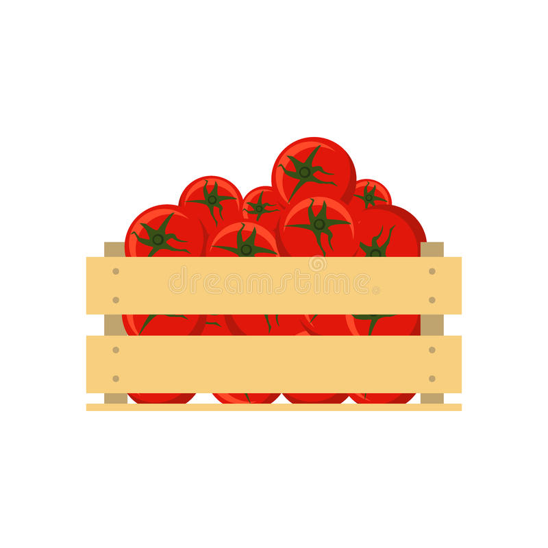 Verse tomaten in houten die krat op witte achtergrond wordt geïsoleerd Vlakke stijl vectorillustratie Vegetarisch dieet, groenten vector illustratie