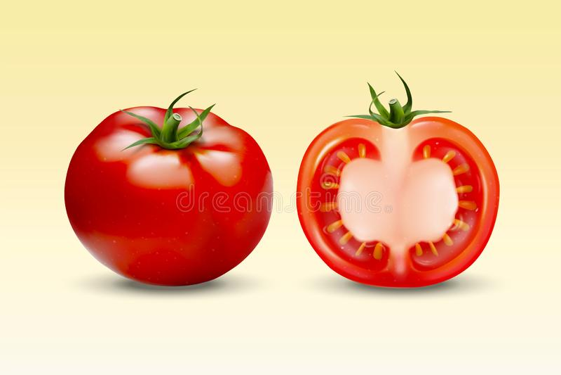 Verse tomatenelementen royalty-vrije illustratie