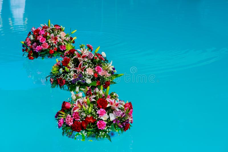 Verse tuinrozen op het blauwe water van een zwembad op een warme de zomerdag royalty-vrije stock afbeeldingen