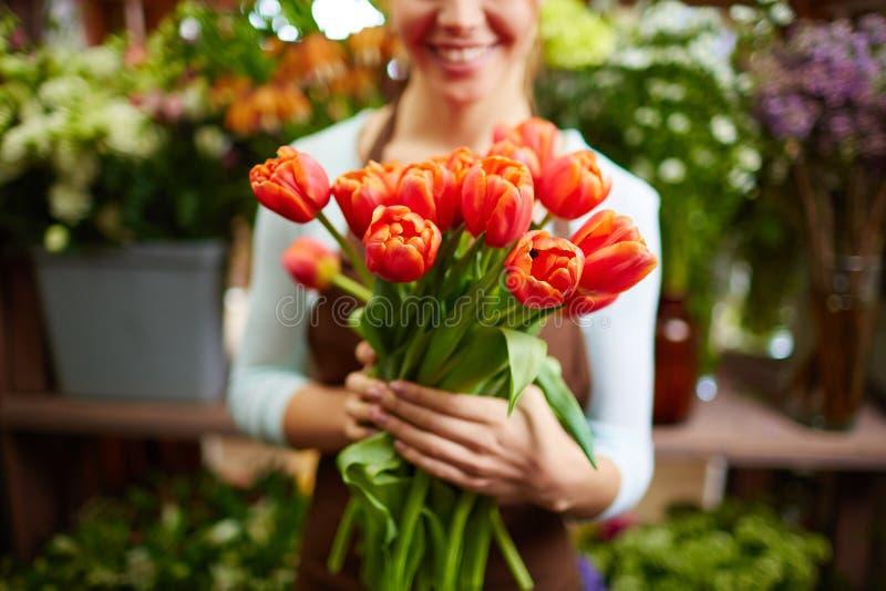 Verse tulpen royalty-vrije stock foto