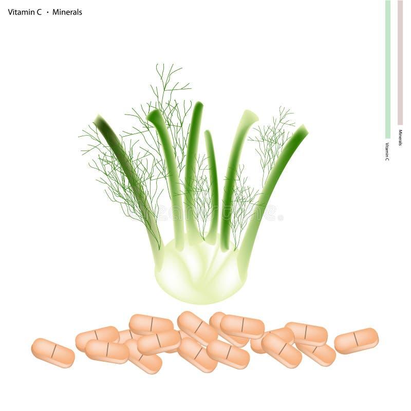 Verse Venkelbol met Vitamine C en Mineralen royalty-vrije illustratie