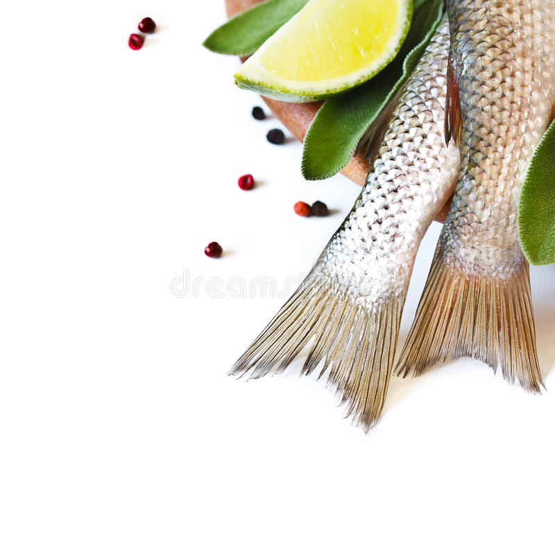 Verse vissen. stock fotografie
