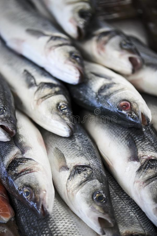 Verse vissen in col. counter klaar verkocht te worden royalty-vrije stock foto