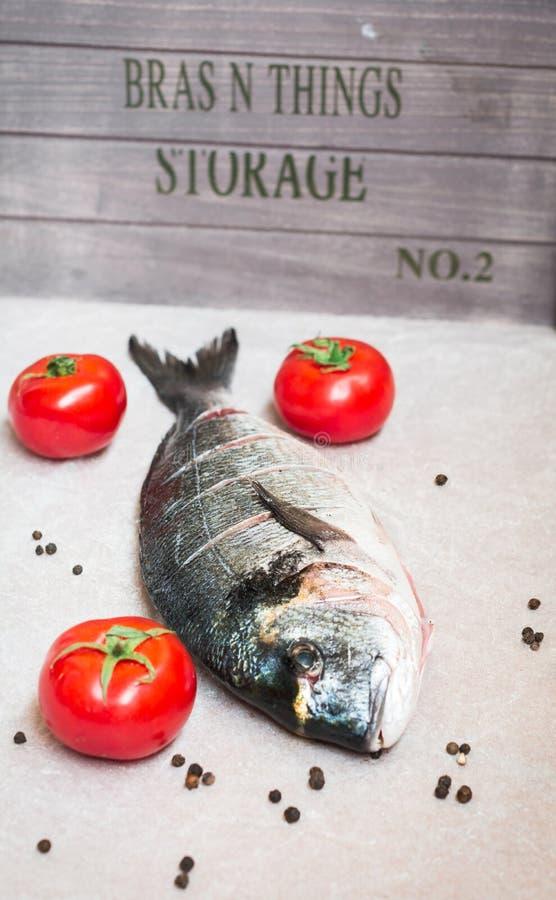 Verse vissen dorade vergulde hoofdbrasem stock foto