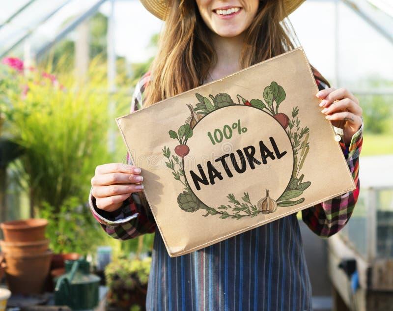Verse voedzame groene natuurlijke heathy royalty-vrije stock fotografie