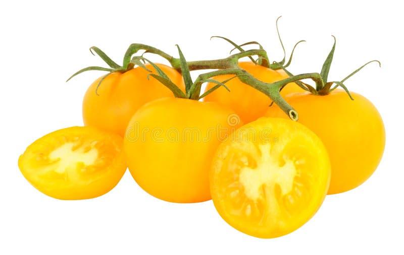 Verse Wijnstok Gerijpte Amber Tomatoes stock foto