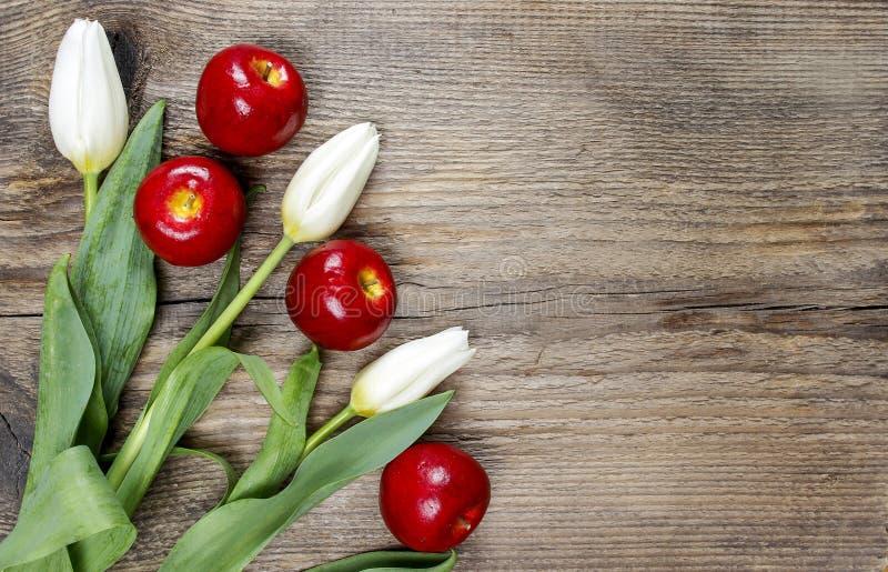 Verse witte tulpen en overweldigende rode appelen royalty-vrije stock foto