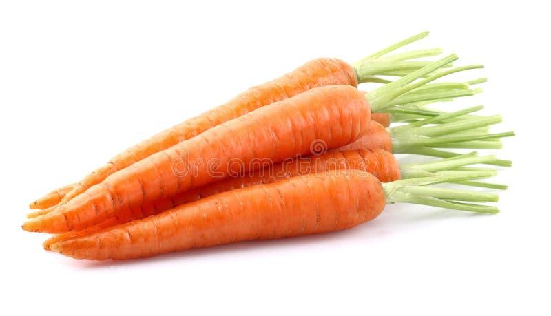 Verse wortel royalty-vrije stock fotografie