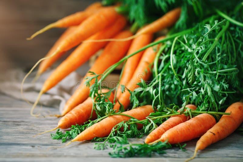 Verse Wortel op Houten Lijst in Tuin De Keratine van groentenvitaminen De natuurlijke Organische Wortel ligt op Houten achtergron stock fotografie