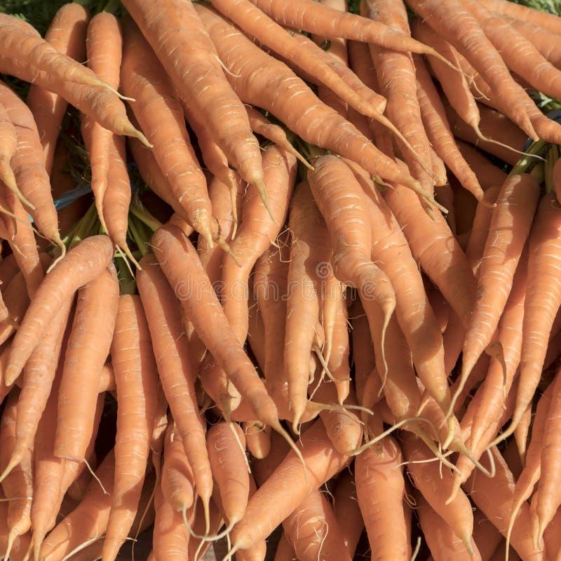 Verse wortelen bij de markt stock foto's