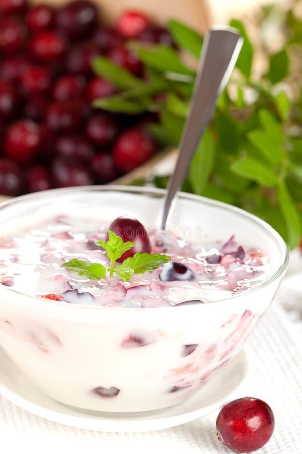 Verse yoghurt met bessen stock afbeeldingen