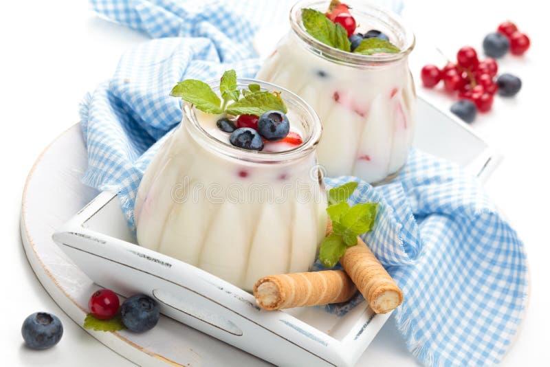 Verse yoghurt met bessen royalty-vrije stock afbeeldingen