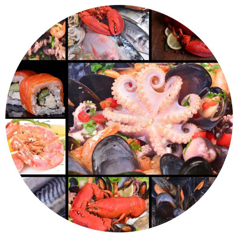Verse zeevruchten stock afbeeldingen