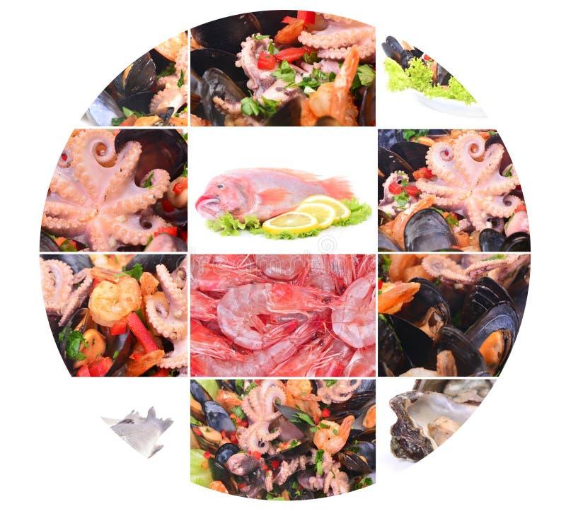 Verse zeevruchten royalty-vrije stock foto's