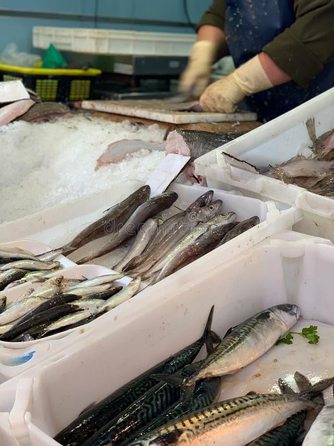 Verse zeevruchten op een vissenmarkt stock afbeeldingen