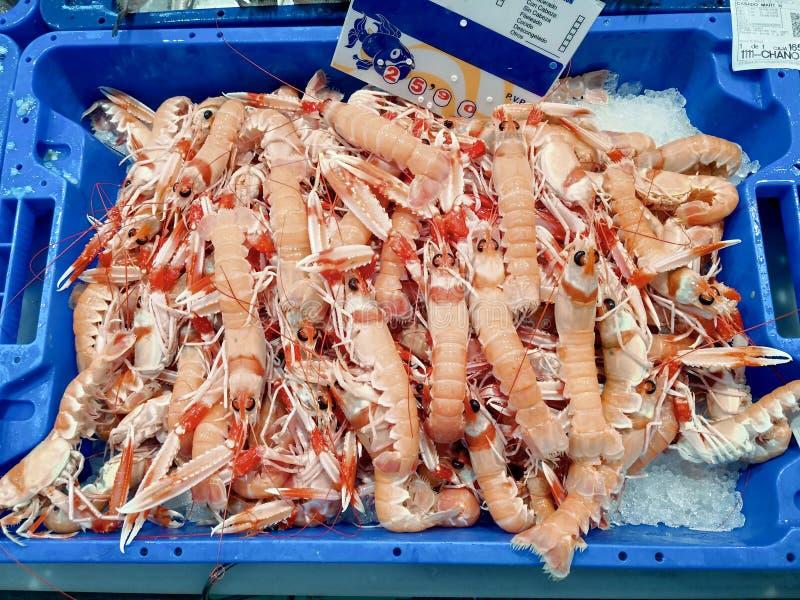 Verse zeevruchtenlangoustine op ijs bij de Isla Crsitina-vissenmarkt, Huelva, Spanje royalty-vrije stock foto's