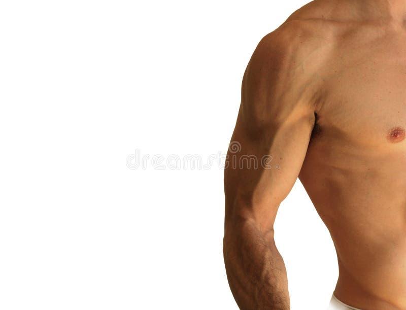 Versehen Mit Nacktem Oberkörper Mann Mit Seiten Stockbild - Bild von ...
