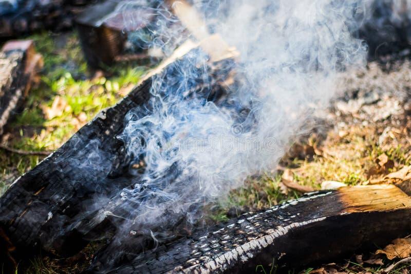 Versengtes Brennholz und Rauch vom Feuer Recreation_ im Freien stockfotografie