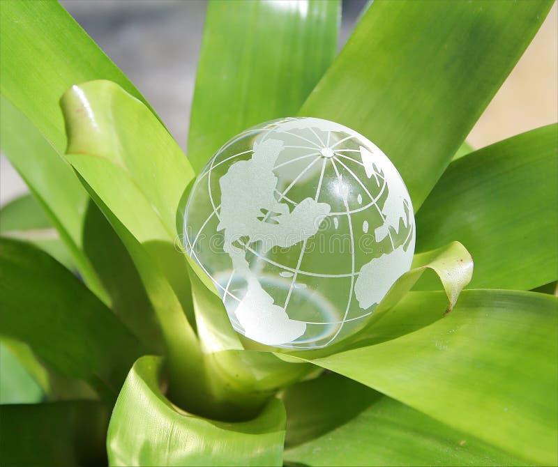 Download Versión De Florecimiento De Los E.E.U.U. Del Mundo Foto de archivo - Imagen de cristal, verde: 183194