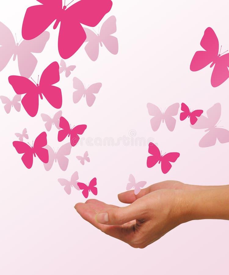 Version du Butterflys photographie stock