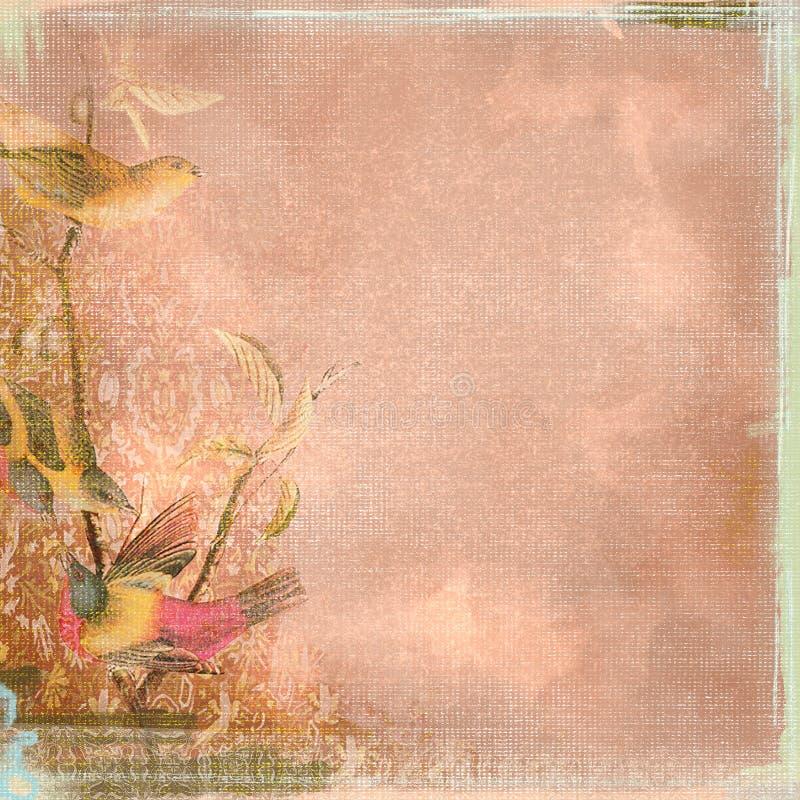 Versleten Grunge de Achtergrond kijkt Perzik en Vogels Boheems Art Deco vector illustratie