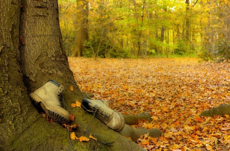 Versleten laarzen in de herfst stock afbeeldingen