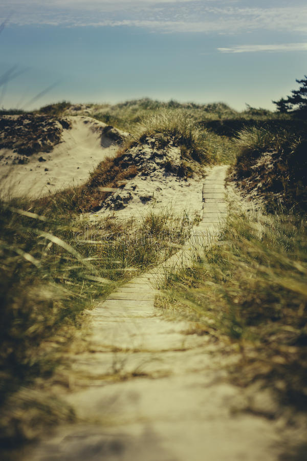 Verso la spiaggia fotografia stock