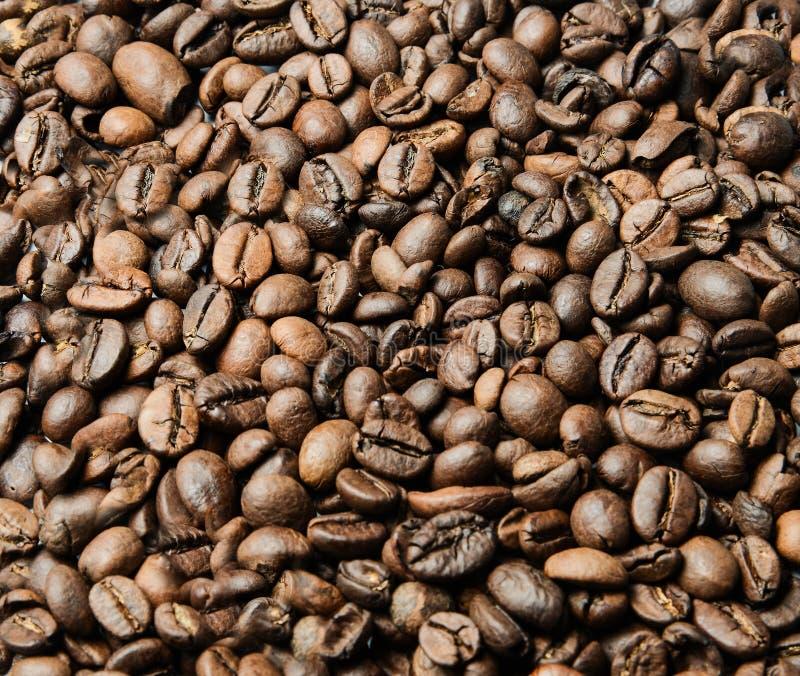 Verspreide geroosterde koffiebonen over de volledige oppervlakte van het kader Achtergrond stock afbeeldingen