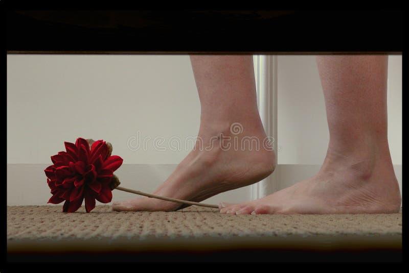 Download Verstecken unter dem Bett stockbild. Bild von jobstep, fußboden - 40421