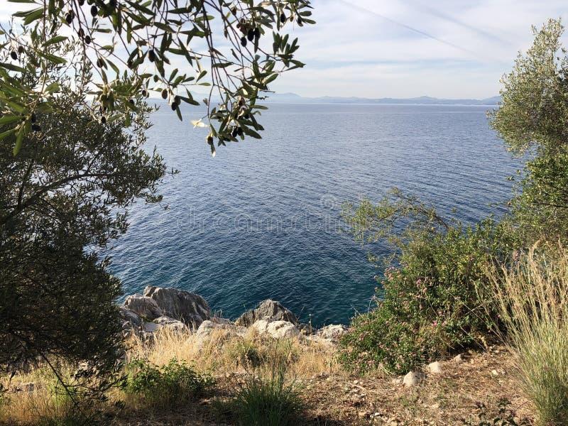 Versteckte See-Griechenland-Baumbetriebsnatur lizenzfreie stockbilder