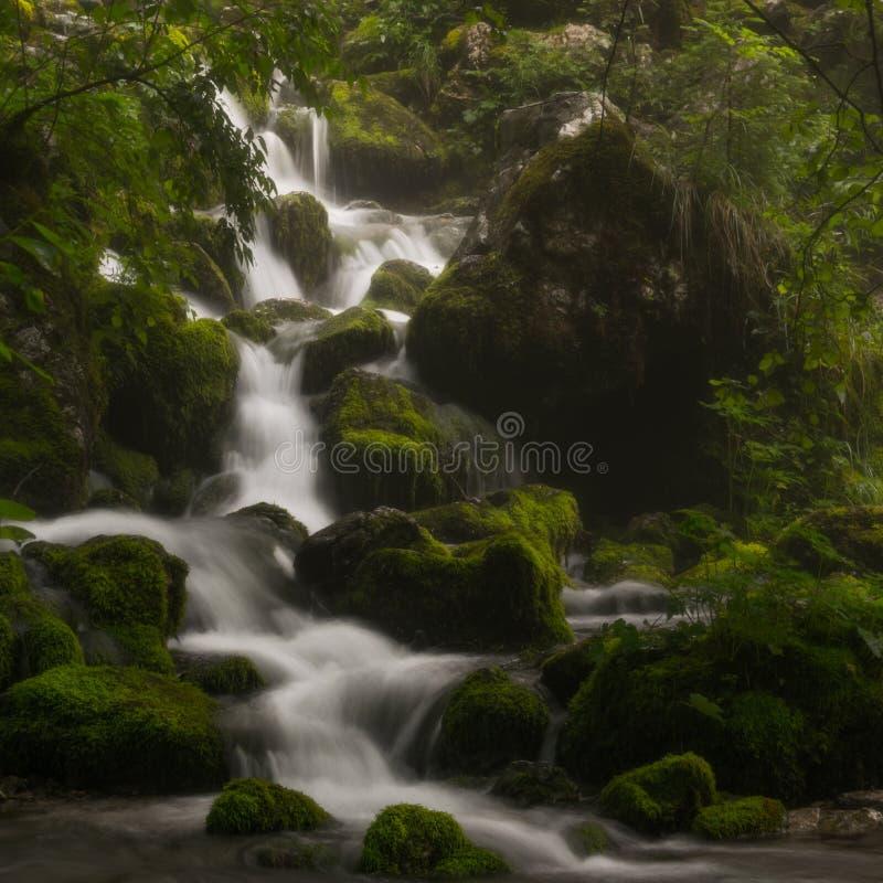 Versteckter Fluss stockfotografie