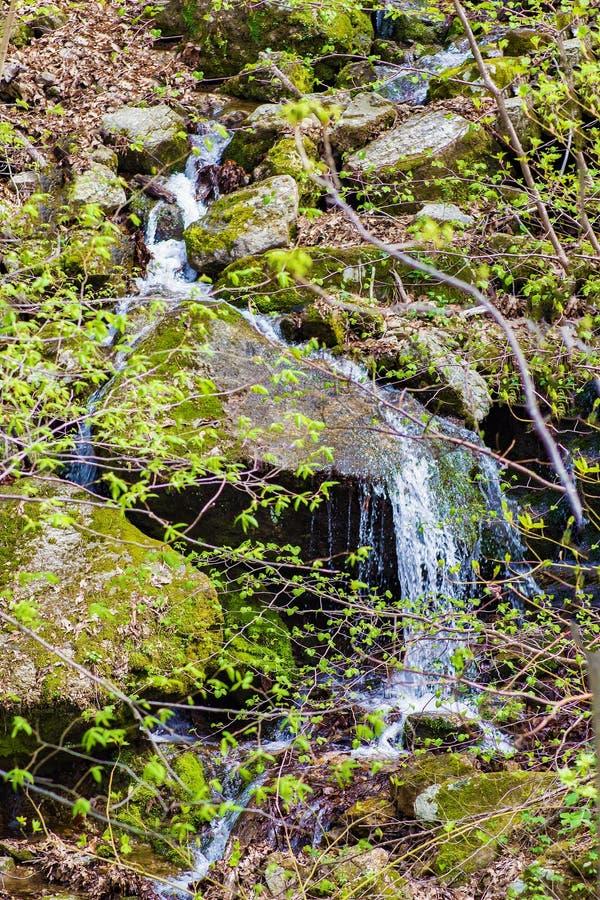 Versteckter Kaskadenwasserfall in blauen Ridge Mountains lizenzfreies stockfoto