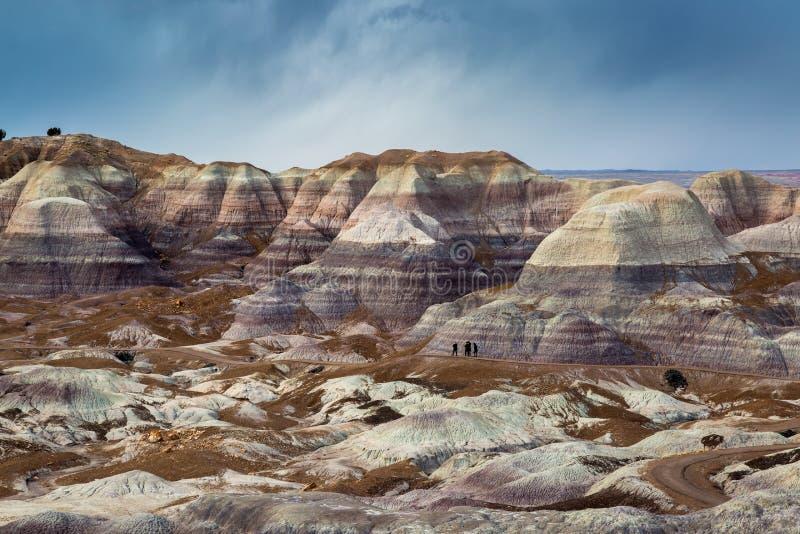 Versteinerte Forest National Park lizenzfreie stockfotos