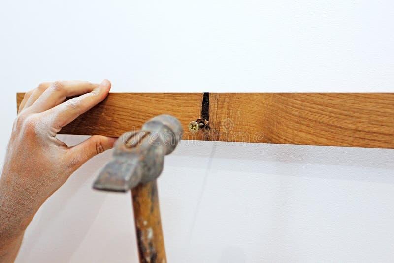 Verstopfen Sie die Schraube in den Dübel im Loch in der Eichenplanke auf der weißen Wand in der Halle stockfotos