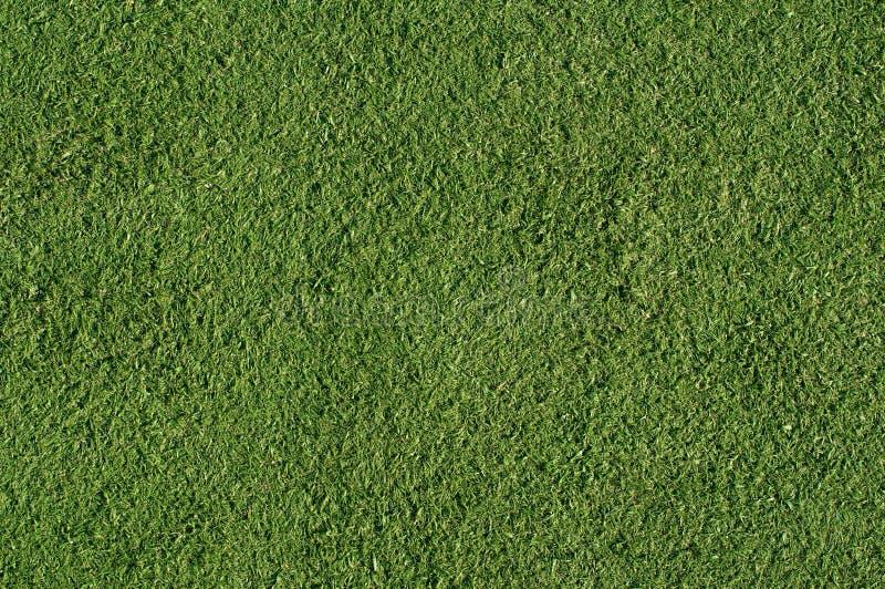 Vert artificiel de gazon image stock