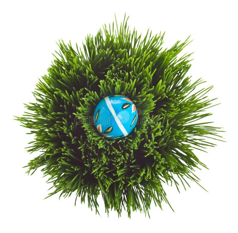 vert d'herbe bleu d'oeuf de pâques photographie stock libre de droits