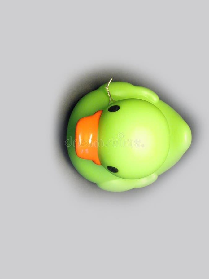 Vert de canard photo stock