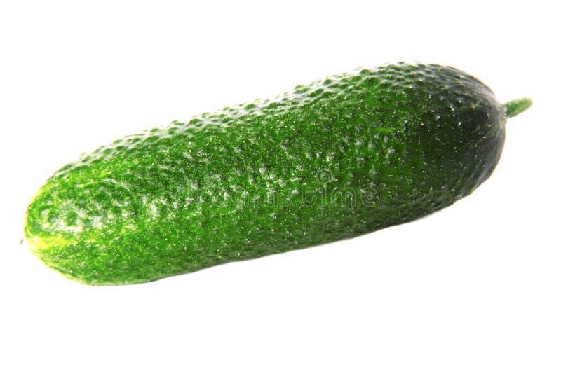 vert de concombre photographie stock