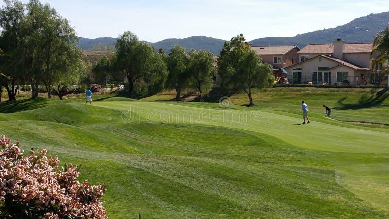 Vert de golf photo stock