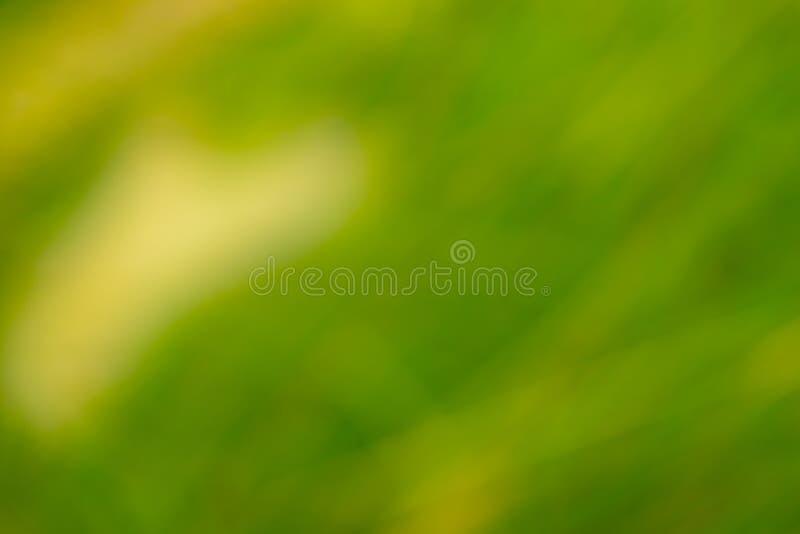 vert de nature de résumé et fond jaune de texture photographie stock libre de droits