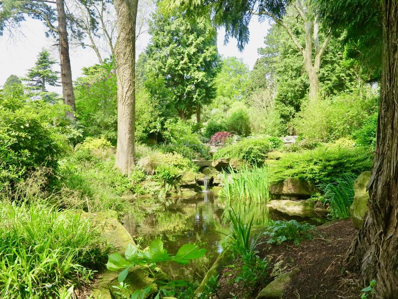 Vert des jardins de Dewstow images libres de droits
